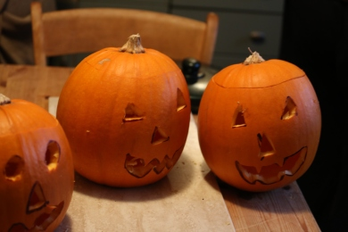 Our pumpkins last year
