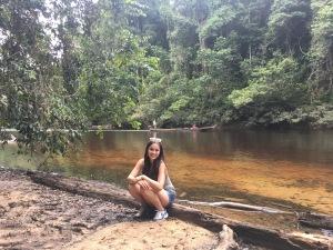 inside the rainforest tamn negara river national park malaysia pahang